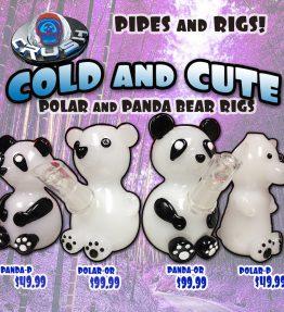 Panda_Bears_PUBLIC
